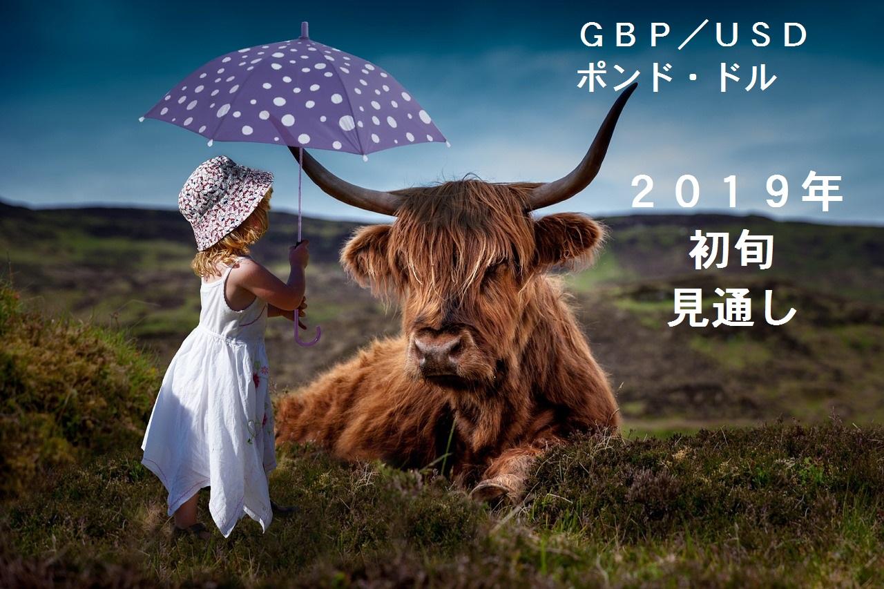 2019-初旬GBPUSD-ポンドルー見通しーひまわり証券1戦目