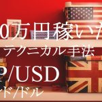 FX-大儲け-稼ぐ手法-テクニカル分析-ひまわり証券1戦目